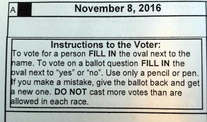 voter-instrux-1116